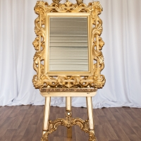 Gold Easel and Mirror (for your seating plans/signage to be attached)